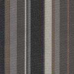 Vibe Stripe Platinum